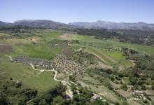 L'Andalousie au printemps