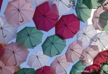 Wops ou les parapluies de Toulouse.
